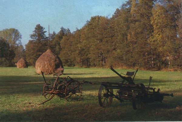 Шпреевальд