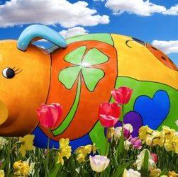 Немецкие свиньи (выражения со словом Schwein – свинья в разговорной речи)